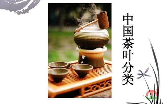 茶叶是怎么分类的?