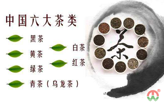 六大茶类是什么?