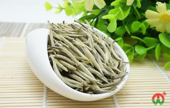 什么是茶季节?