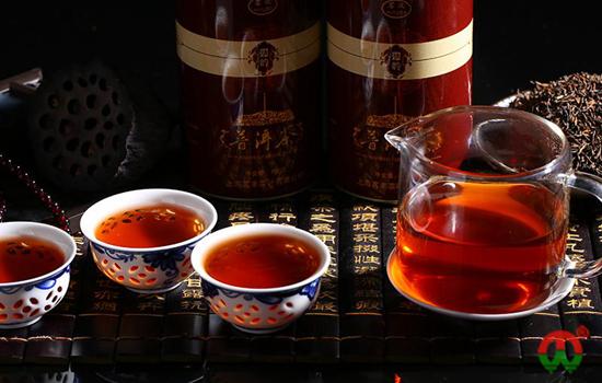 尘外金典老茶