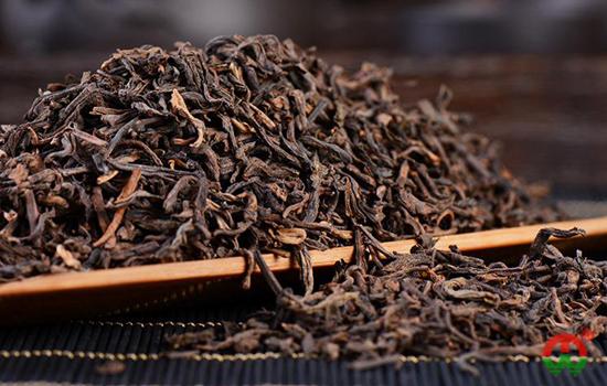 茶艺师简单5招教你把普洱老茶泡出香醇来